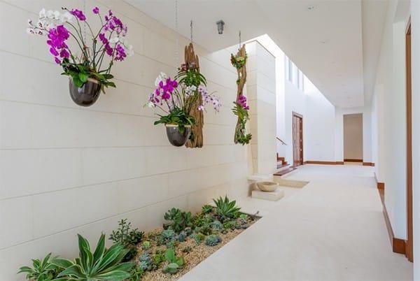 Hoa lan được treo trên trần nhà và các loài xương rồng được trồng trên mặt đất. Đây thực sự là một sự kết hợp hoàn hảo!