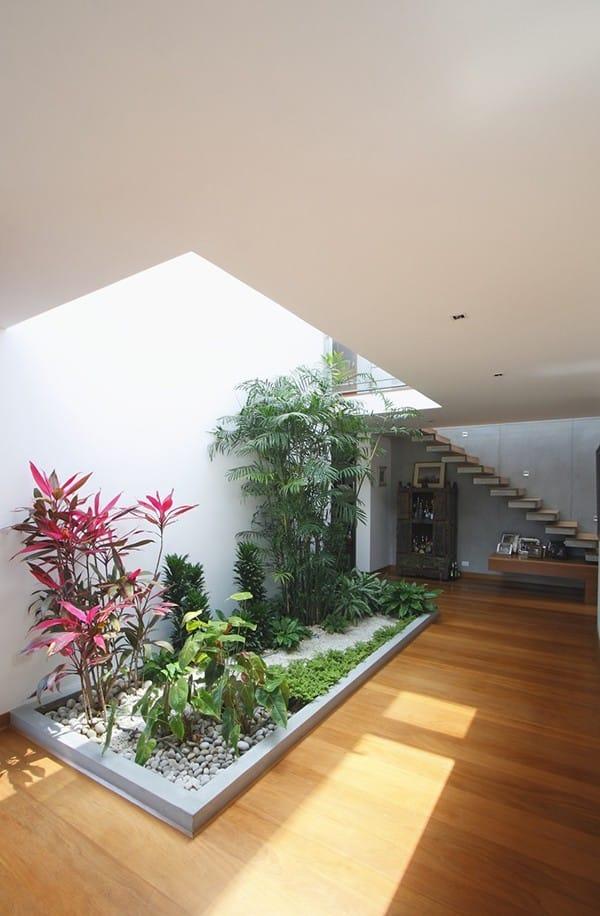 Chỉ cần bạn đặt một khu vườn bên trong nhà, thì chắc chắn khu vực đó bạn sẽ thấy khác hoàn toàn!