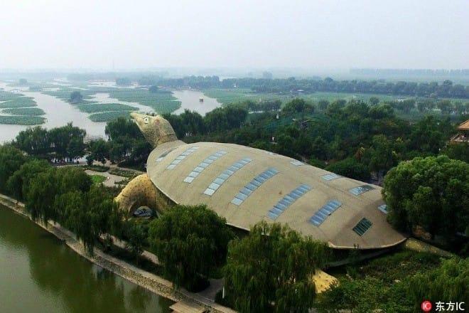 """Lạ đời tòa nhà hình con rùa khổng lồ mà nhìn xa cứ ngỡ """"cụ rùa"""" lên bờ - 1"""