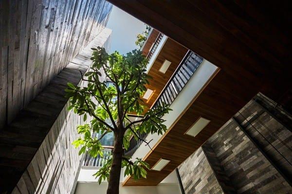 Nhà ống 4 tầng mà đẹp như resort nhờ cây xanh mọc khắp nhà - 11