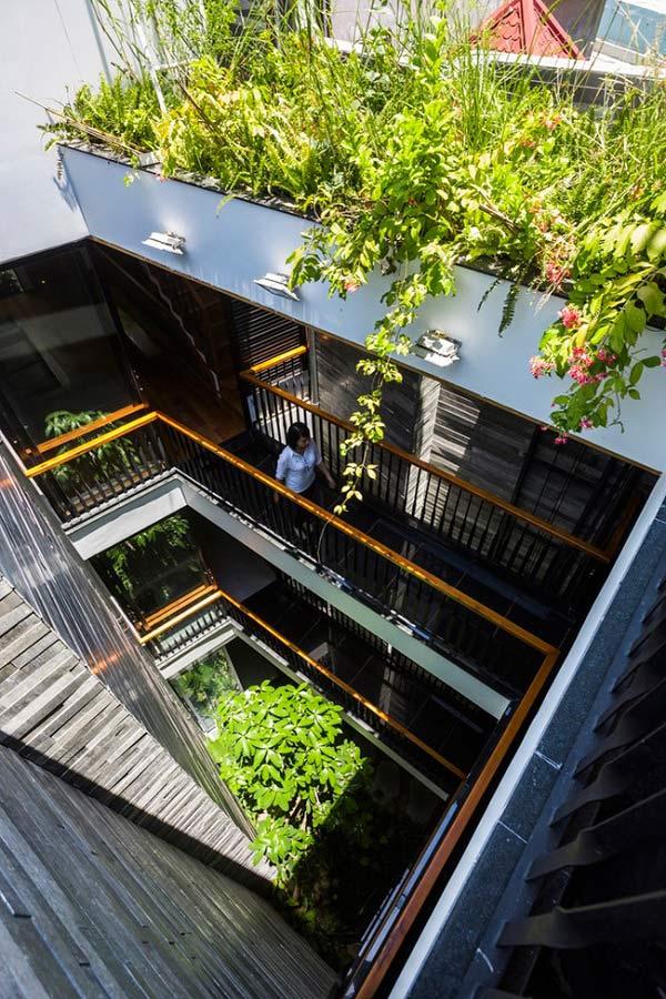 Nhà ống 4 tầng mà đẹp như resort nhờ cây xanh mọc khắp nhà - 2