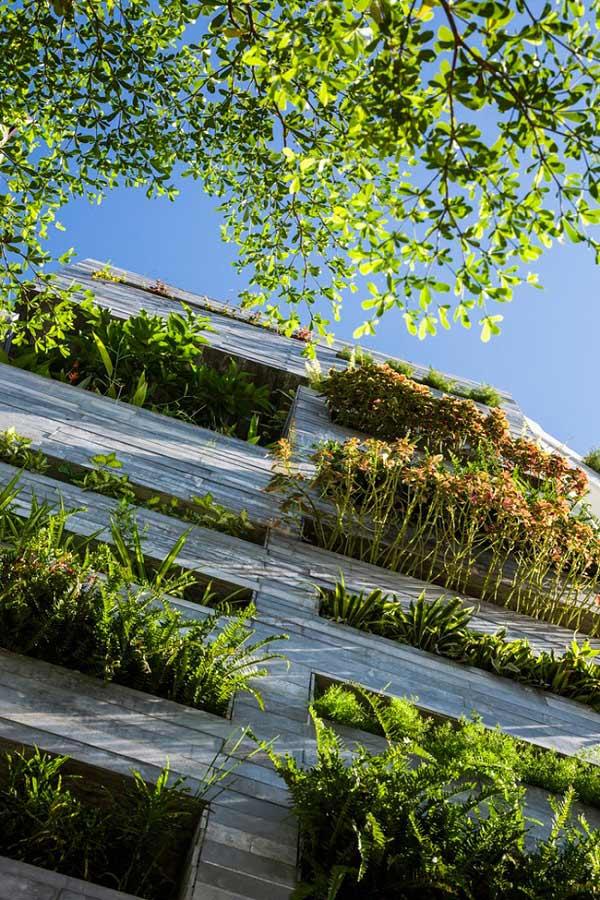 Nhà ống 4 tầng mà đẹp như resort nhờ cây xanh mọc khắp nhà - 5
