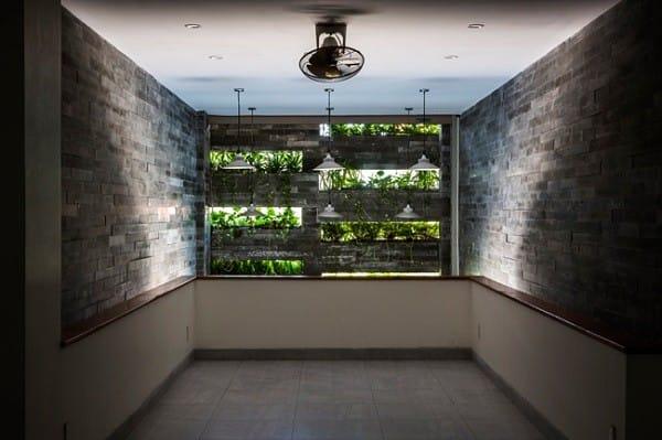 Nhà ống 4 tầng mà đẹp như resort nhờ cây xanh mọc khắp nhà - 6
