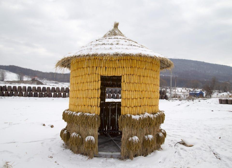 """Lão nông tự bỏ tiền xây nhà từ 30.000 bắp ngô vàng óng khiến dân tình """"choáng váng"""" - 6"""