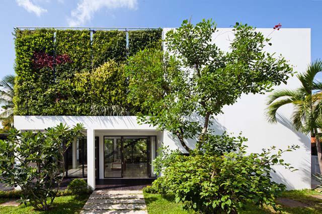 Thay tường thô cứng bằng vườn treo, biệt thự Việt đẹp ngỡ như ở trời Tây - 1