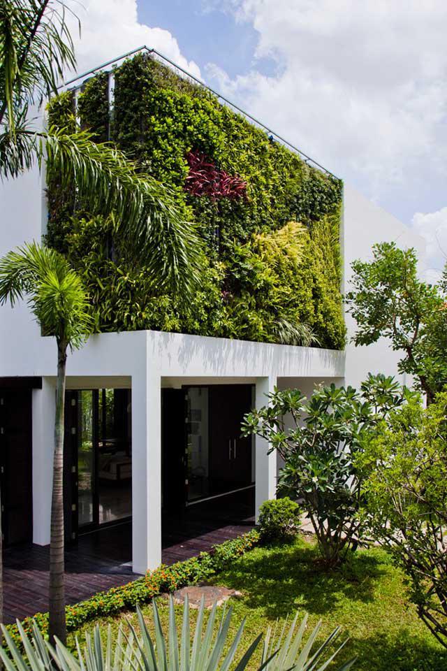 Thay tường thô cứng bằng vườn treo, biệt thự Việt đẹp ngỡ như ở trời Tây - 3