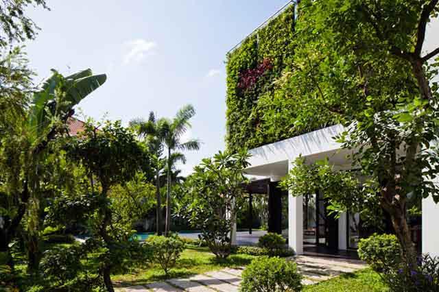Thay tường thô cứng bằng vườn treo, biệt thự Việt đẹp ngỡ như ở trời Tây - 8