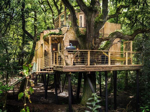 Nhìn là muốn đến ở ngay những ngôi nhà trên cây đẹp ngoạn mục này! - 5