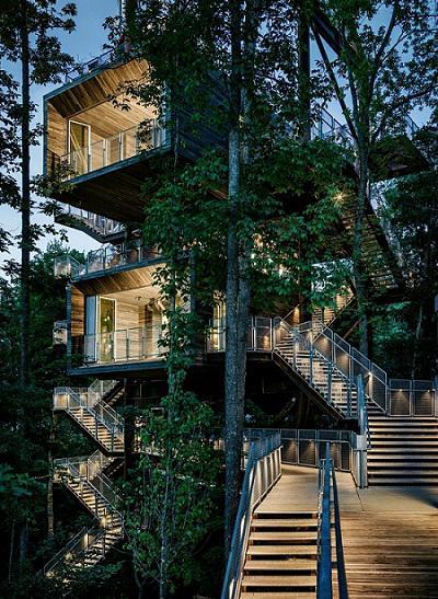 Nhìn là muốn đến ở ngay những ngôi nhà trên cây đẹp ngoạn mục này! - 8