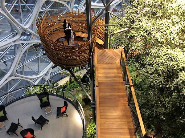 """Đi làm như đi... vào rừng, văn phòng mới của Amazon khiến nhân viên quá """"choáng váng"""" - 12"""