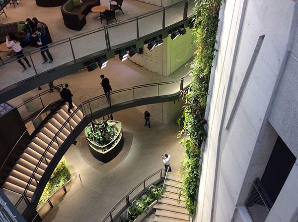 """Đi làm như đi... vào rừng, văn phòng mới của Amazon khiến nhân viên quá """"choáng váng"""" - 13"""