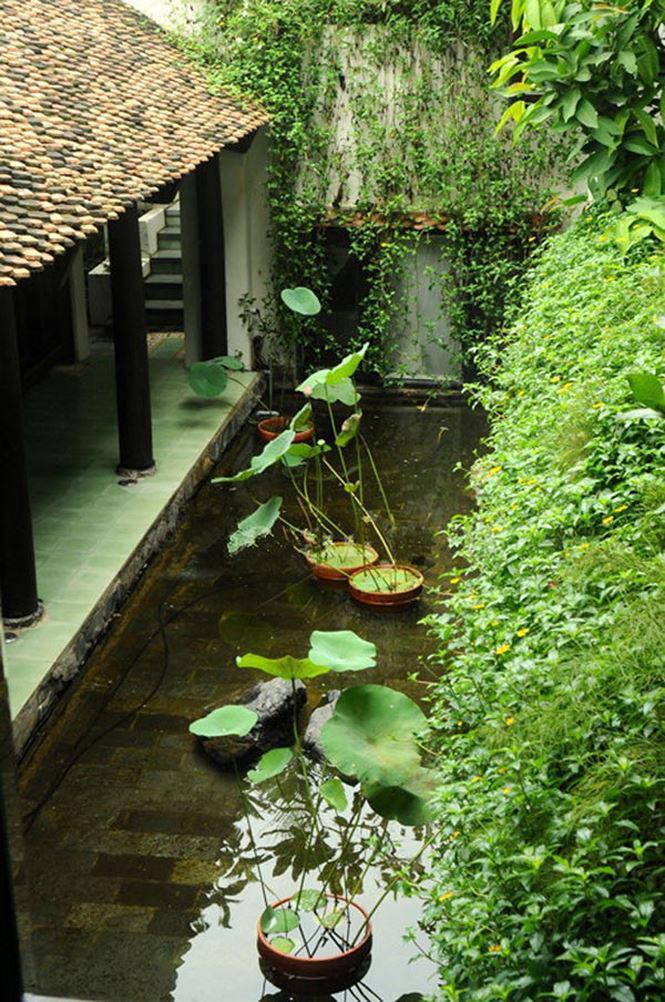 Cận cảnh khu nhà vườn triệu đô bình yên, xưa mà không cũ của diva Hồng Nhung - 5