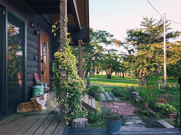 Bỏ phố về quê, gia đình 4 người hạnh phúc trong căn nhà gỗ đẹp như mơ ngay sát biển - 3